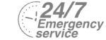 24/7 Emergency Service Pest Control in New Cross, New Cross Gate, SE14. Call Now! 020 8166 9746