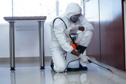 Emergency Pest Control, Pest Control in New Cross, New Cross Gate, SE14. Call Now 020 8166 9746